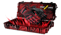 Gloves case